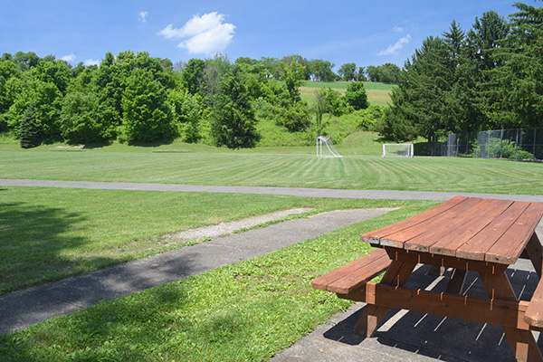 Soccer field and picnic table